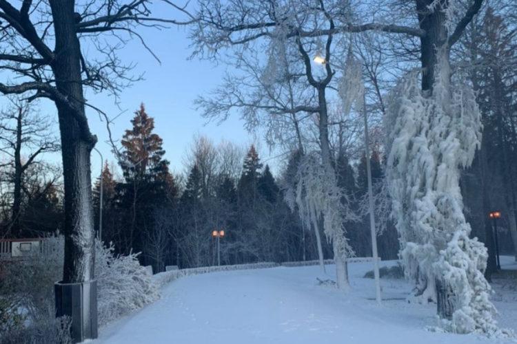 В Одинцово лёг снег